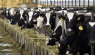 Govt officials implicated in Gupta-linked dairy farm