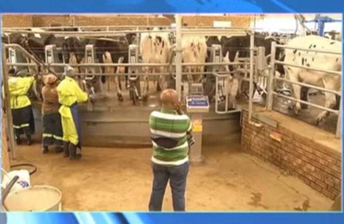More than R 220 million meant for the Estina dairy farm project has been paid to companies linked to the politically-connected Gupta family.
