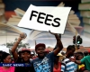 Analysts question sustainability of fee-free higher education