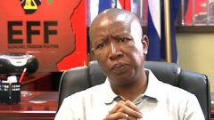 EFF leader, Julius Malema