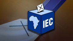 IEC Ballot box and cross