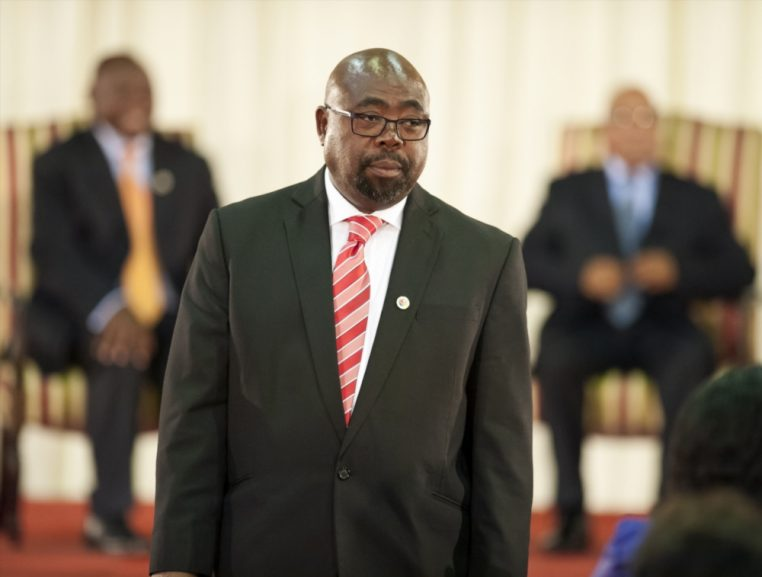 Thulas Nxesi Gallo Images 762x577 - Government wants fair treatment of foreign workers