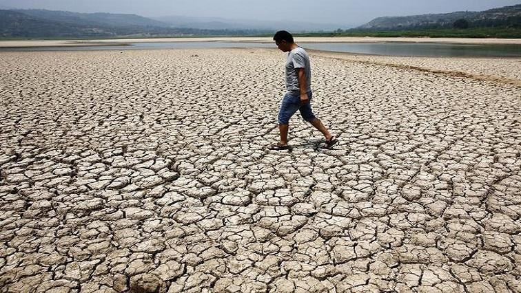 A man walking on dry land