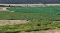 A file photo of a farm