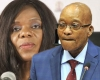 State Capture Report: Annexure A1 – Interview between Former President Zuma and the Public Protector