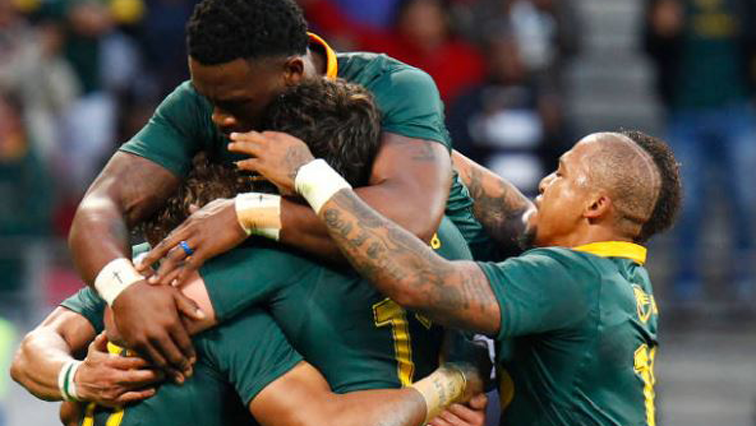 Springboks in action