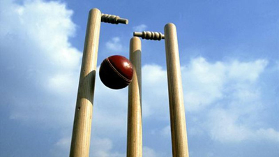 A cricket ball and wickets