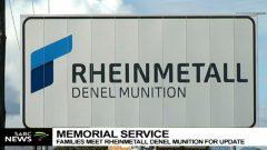 Denel company logo