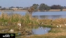 Many responsible for Vaal River pollution
