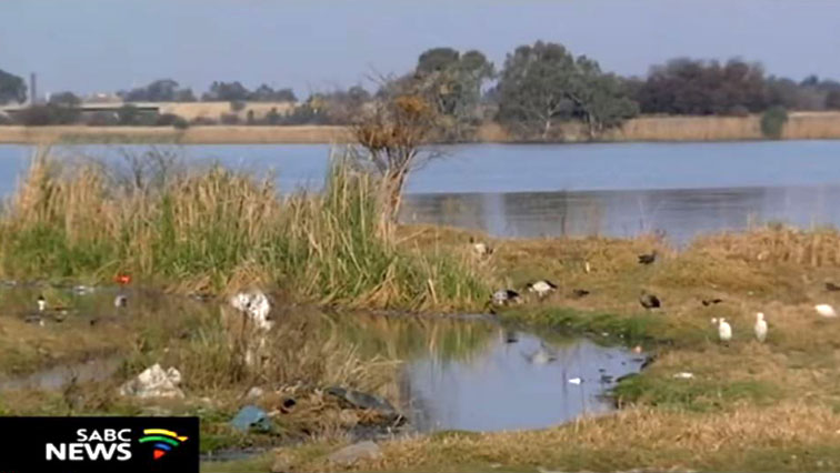 The polluted water of the Vaal
