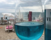 Spain startup introduces Blue Wine
