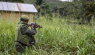 Rebels kill 11, abduct 15 in DR Congo: security sources