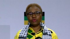 Lindiwe Zulu speaking at media briefing