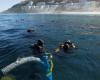 Portuguese slave ship wreck declared SA Heritage Site