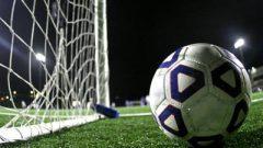 Soccer ball next to a net