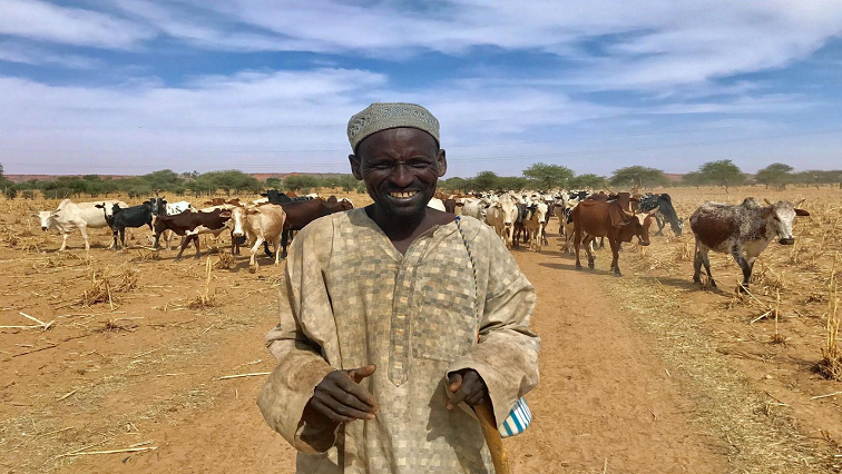 A Fulani cattle herder walks with his cows outside the city of Tillaberi, southwest Niger.