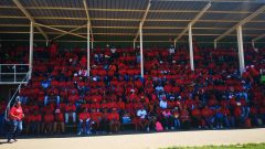 EFF supporters.
