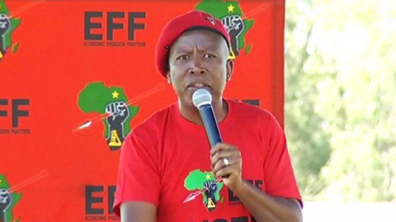 Julius Malema speaking
