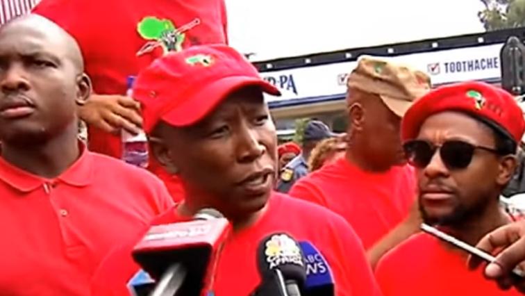 EFF's Julius Malema