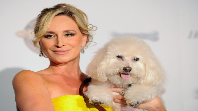 SABC News Sonja Morgan and dog Millou Reuters - MTV to host first reality TV convention