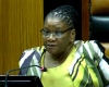 Modise elected National Assembly Speaker