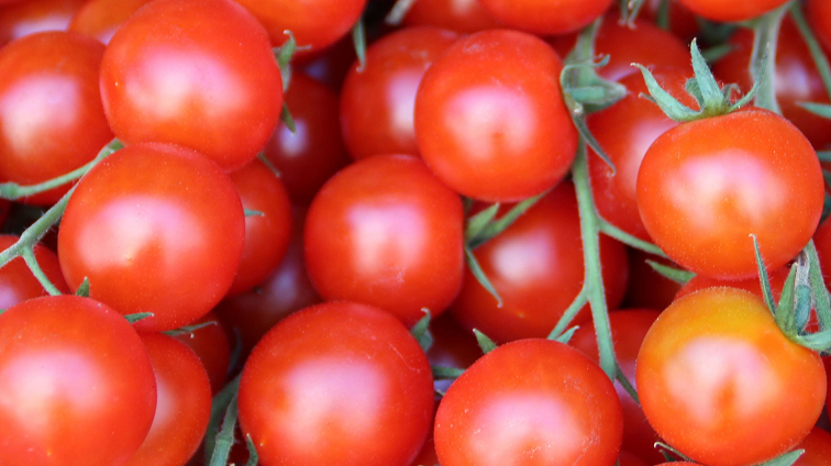SABC News Tomatoes P - U.S. to impose tariffs on Mexican tomatoes as new pact remains elusive