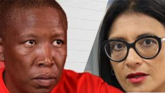 Malema and Brown