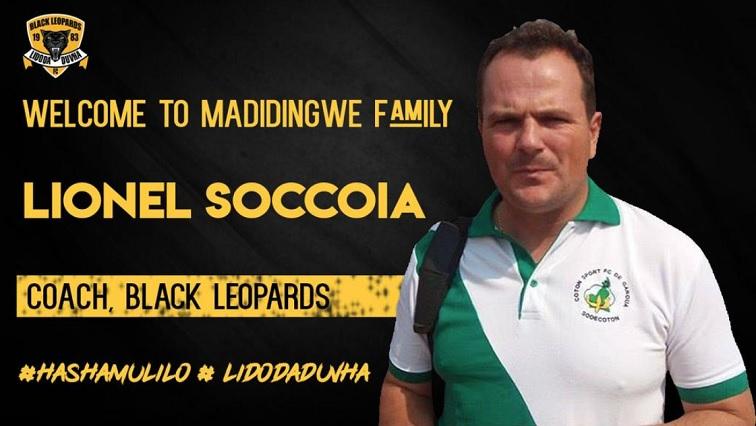 SABC News Leopards Twitter - Black Leopards' new technical team set to start work on Monday