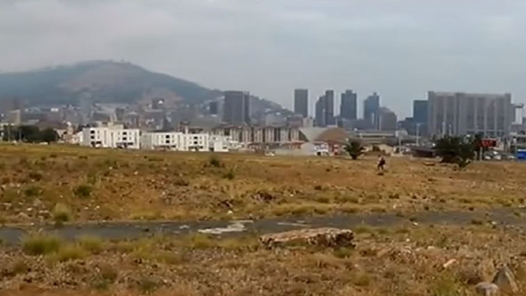 SABC News district six in Cape Town - DA supports call to rename Zonnebloem back to District Six