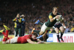 Du Preez Reuters 252x169 - Springboks World Cup glories and woes