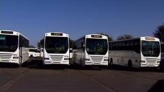 New fleet of busses