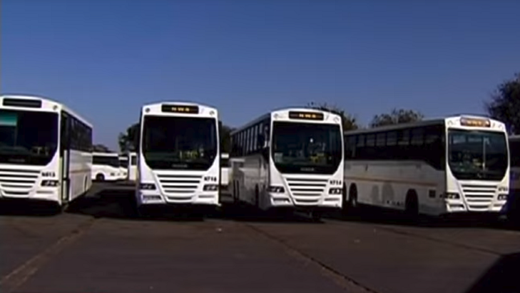 New fleet of busses