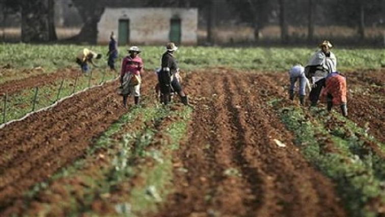 Farmers on land