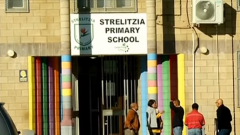 Strelitzia primary School