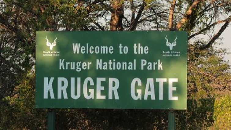 SABC NEWS kruger P - SANParks launches free visitations to 21 parks