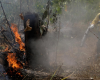 Warplanes dump water on Amazon as Brazil military begins fighting fires