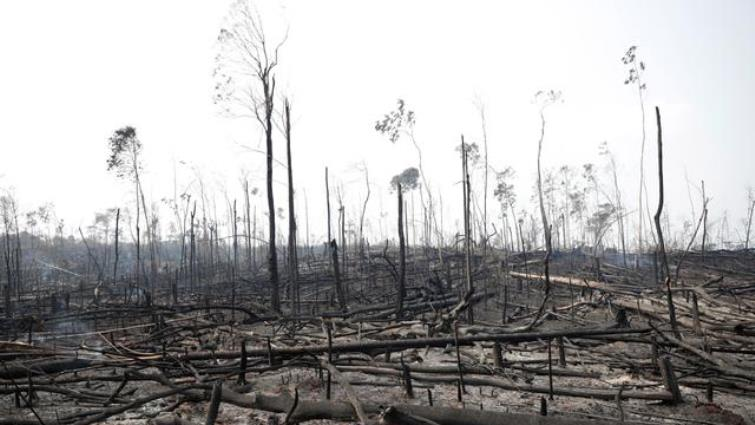 Brazil's Bolsonaro says to fight Amazon fires, blames weather - SABC News - Breaking news, special reports, world, business, sport coverage of all South African current events. Africa's news leader.