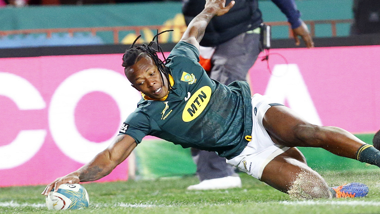 Instinct drives wing S'busiso Nkosi as he makes big Bok statement - SABC News - Breaking news, special reports, world, business, sport coverage of all South African current events. Africa's news leader.