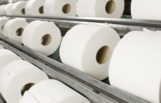 Women Owned Toilet Paper Manufacturing Company Awaiting