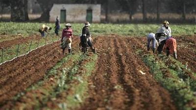 SABC News Farming Reuters - KwaZulu-Natal government assists small scale farmers