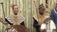 Zulu king and his cousin Buthelezi