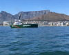 Greenpeace vessel in Cape Town to highlight dangers of overfishing