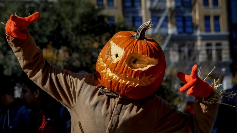 SABC News Halloween R - Pop culture comes to life along mile-long Halloween pumpkin path