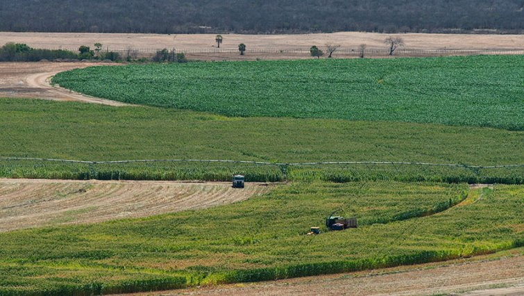 SABC News Land Reuters - Agri-SA warns government against uncertainty on land reform