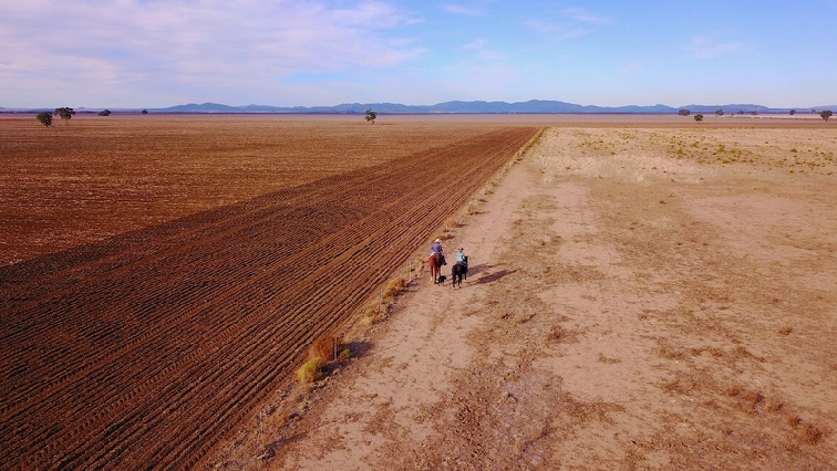 SABC News drought Reuters - Drought severely affecting agriculture production across SA
