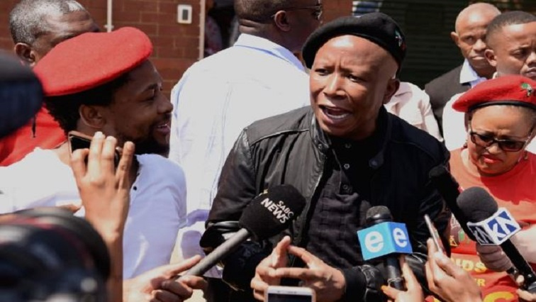 Julius Malema and Mbuyiseni Ndlozi.