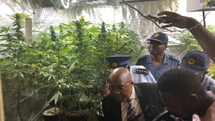 #PoliceMinistry Acting Police Minister, Dr Aaron Motsoaledi and #SAPSNPC, General #Sitole are joined by Gauteng PC, Lt General Mawela inspecting the arms cache and drug cultivation/lab found in Wierdabrug Pretoria.