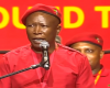 Title deeds betray the need for proper land redistribution: Malema