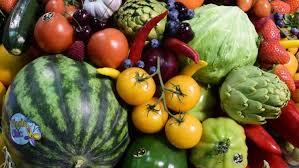 SABC News Veg P - Veganism is a belief protected under UK law, tribunal rules