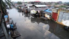 aftermath of Congo Floods
